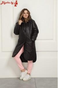 Куртка Ri-2120-2